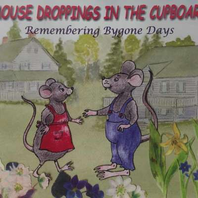 Mouse Droppings in the Cupboard
