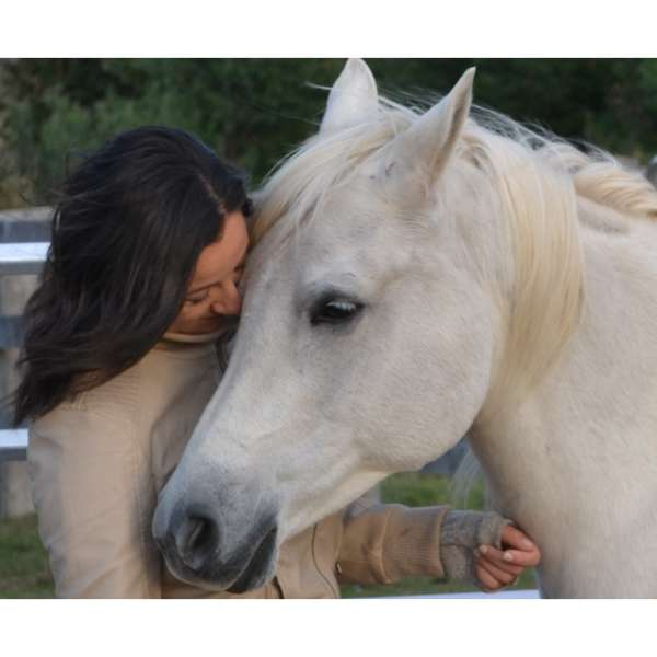 The heART of Healing with Horses