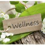 Complementary Wellness Wednesdays Workshops at the SSAC!