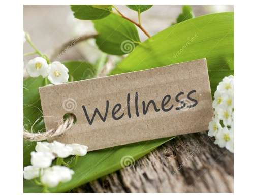 April Complementary Wellness Wednesday Workshop