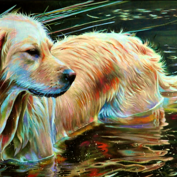 ACRYLIC PAINTING With Kelly McNeil ~ PAINT A GOLDEN RETRIEVER