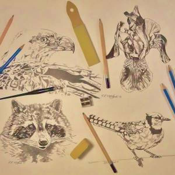Drop-In Drawing Wednesdays with Len MacLeod